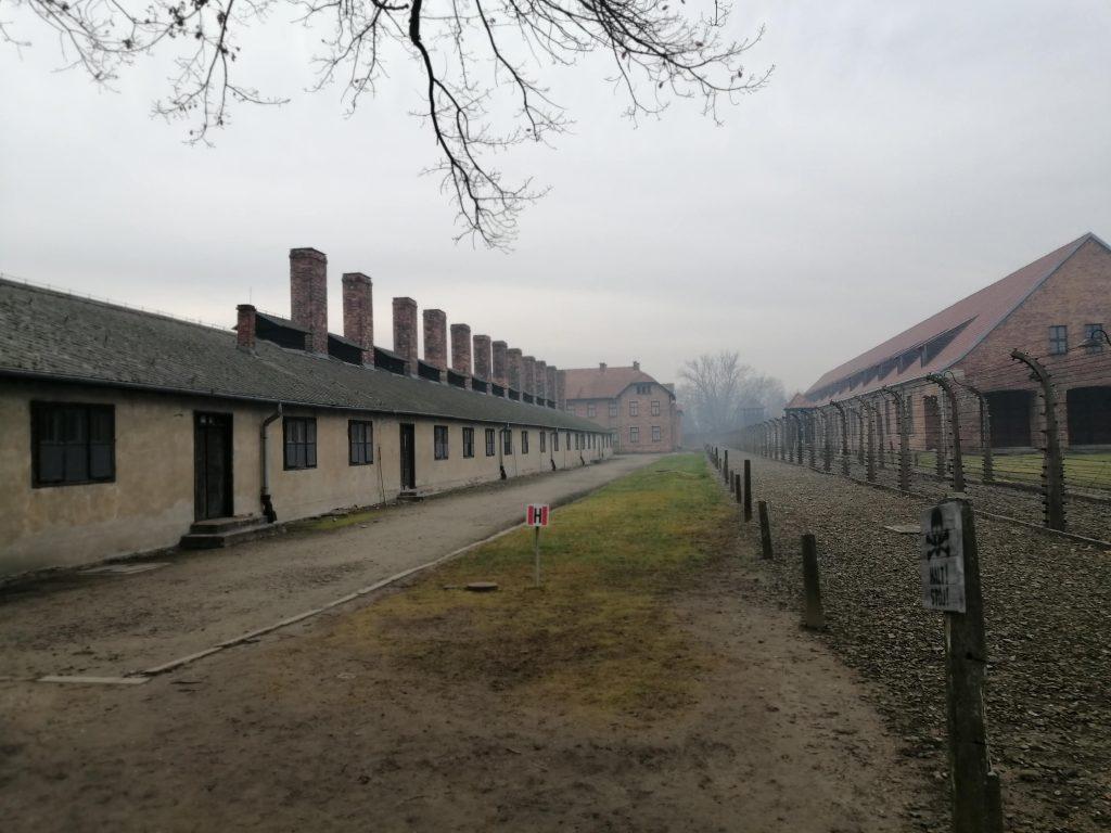 Так сегодня выглядит территория бывшего концлагеря.