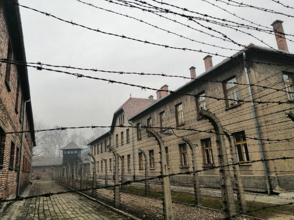 Бараки за колючей проволокой. Освенцим (Аушвиц)